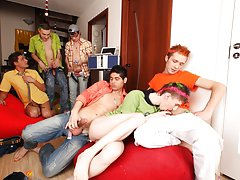 gay newsgroups for escorts